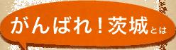 がんばれ!茨城とは